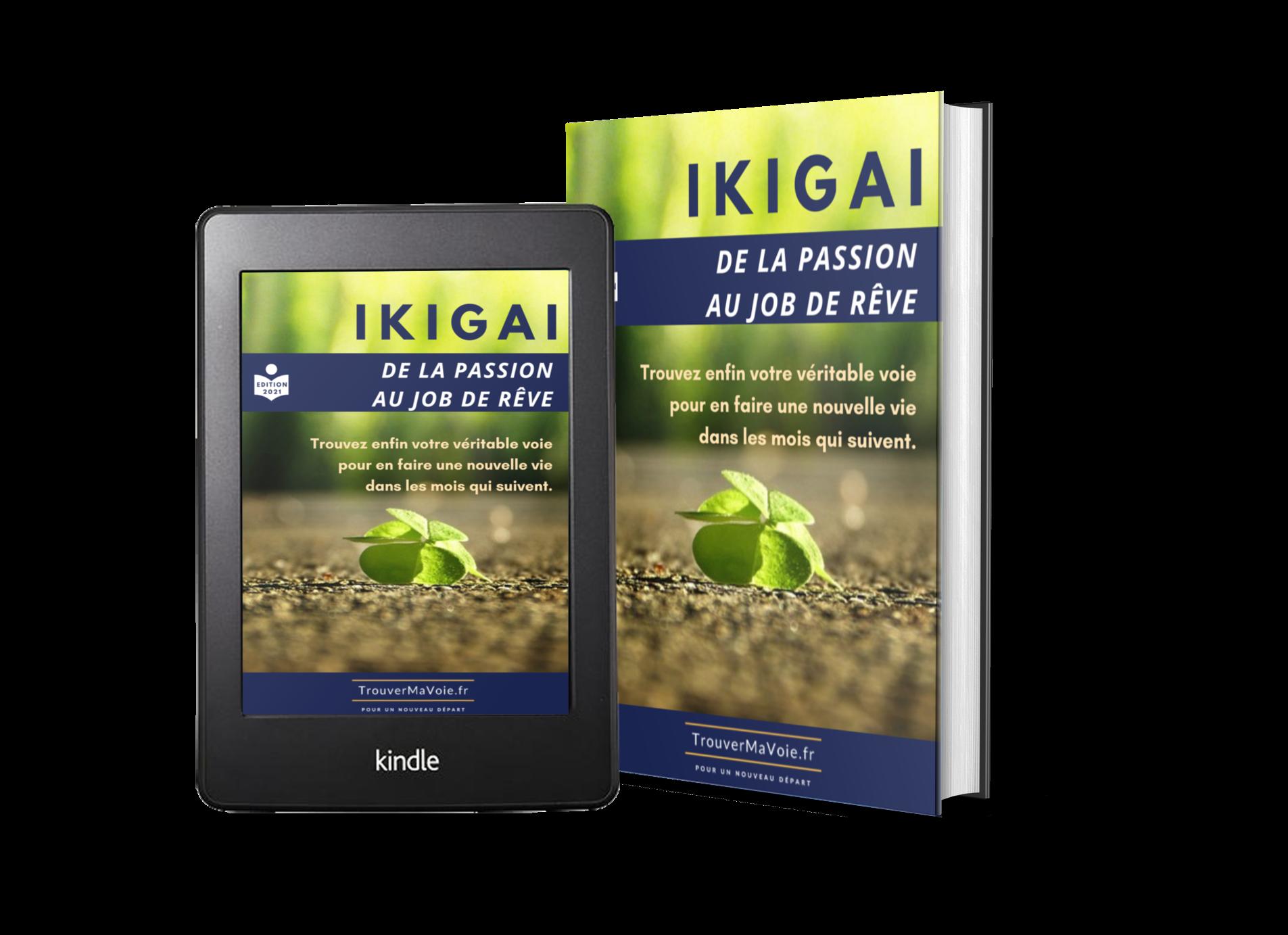 trouver son ikigai pdf