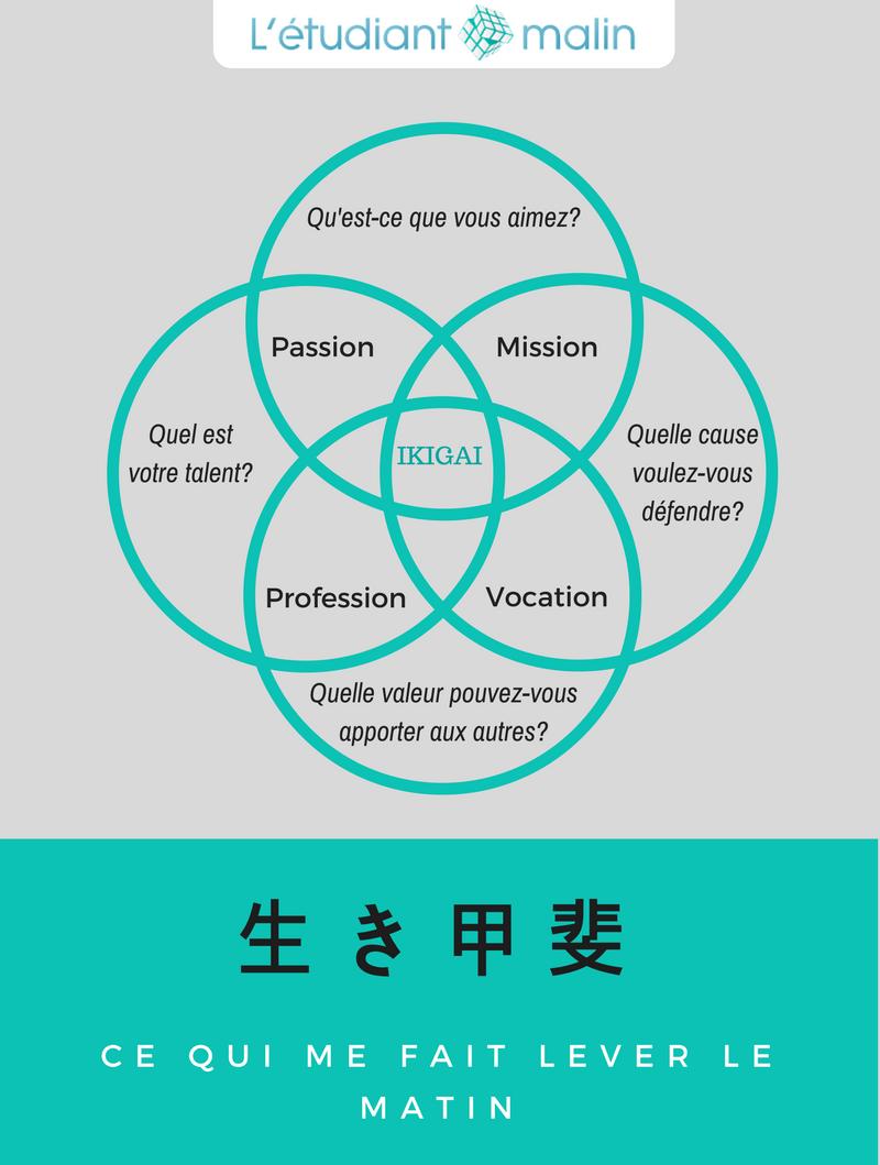 schema-ikigai